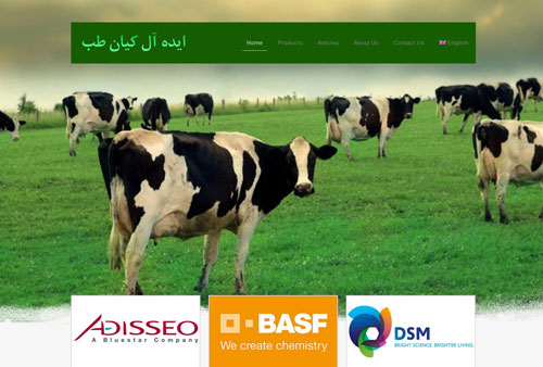 تولیدی بازرگانی ایده آل کیان طب (۲ زبانه)